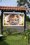 Gecko Sign 9416